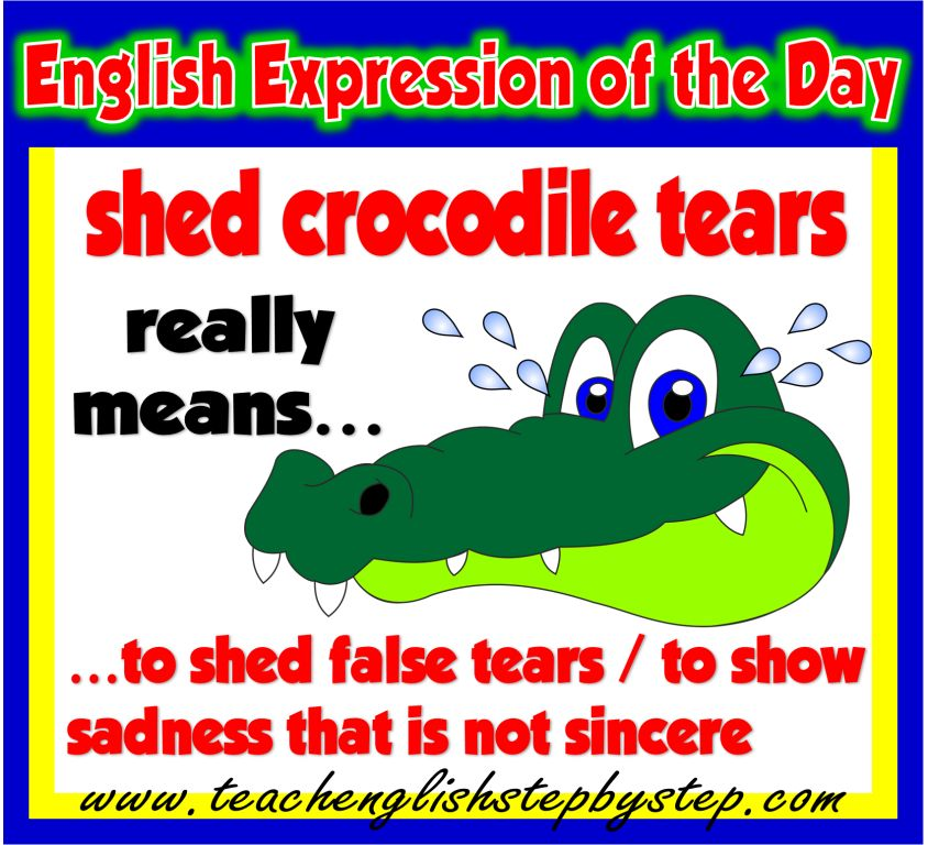 SHED CROCODILE TEARS