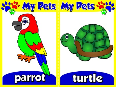 My Pets - Set of 10 Flashcards