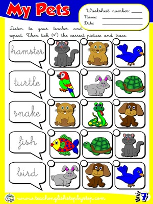My Pets - Worksheet 3