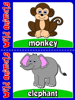 Wild Animals - Flashcards