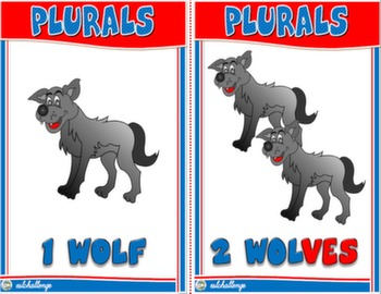 THE PLURAL OF NOUNS FLASHCARDS