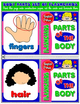 #PARTS OF THE BODY FLASHCARDS (12 FLASHCARDS)