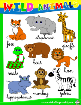 WILD ANIMALS PICTURE DICTIONARY #