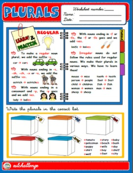 THE PLURAL OF NOUNS - STUDY WORKSHEET + EXERCISES